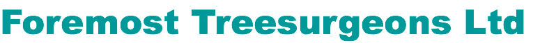 Foremost Treesurgeons Logo